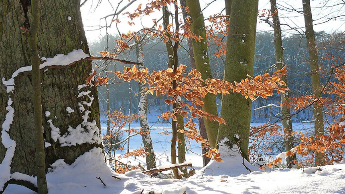 Welterbe im Winter