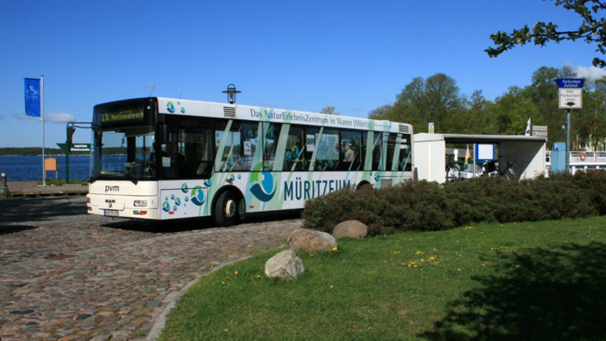 Nationalpark-Ticket-Bus
