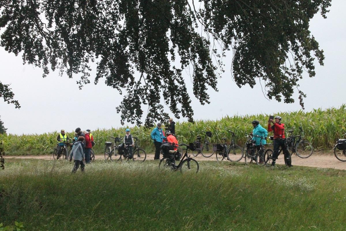 naturpark-fahrrad-tour-nossentiner-schwinzer-heide