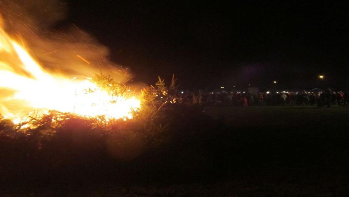 tannenbaumverbrennung-tmv_2